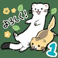 オコジョとヤマネ 1