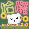 Cute white bear-Big font-Greetings