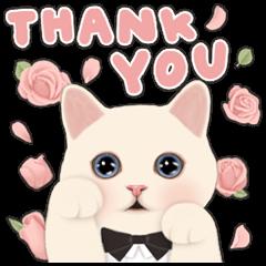[BIG] CHOO CHOO CAT Thankful Stickers