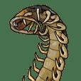 Sleepy Centipede (Eng)