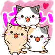 Three Chibi neko
