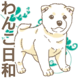 Wanko-Biyori White Shiba Inu 3