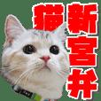cat Sticker shinguu