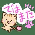 Gentle Tiger cat3