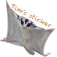 Sugar Glider Tim's Sticker