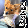 Teen Pups 2