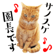 Sticker for help cats Principal Sanosuke