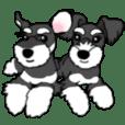 ASTER & LYZA
