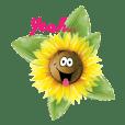 sun funny flower