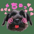 komuyomofu_20210221000511