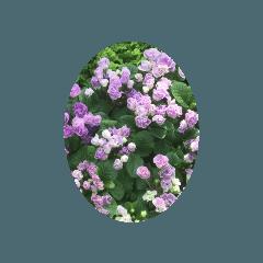 yuriko_20210223210411
