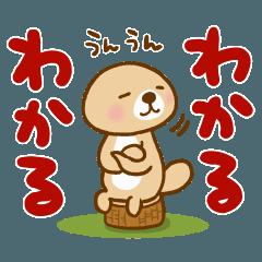Rakko-san [For reply]