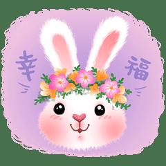 萌小兔-TuTu