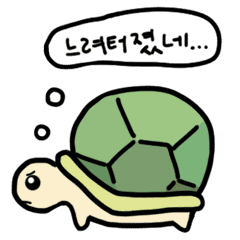 Baby turtle's busy daily life