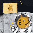 Shiba to the moon