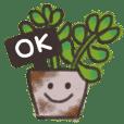 癒しの多肉植物とサボテン★