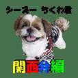 Shih Tzu Chikuwa Kansai dialect