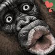 大猩猩!3
