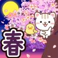 自然猫♥溫暖的春天貼圓