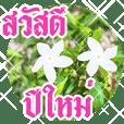 อวยพรปีใหม่ไทย กับสวนดอกไม้สวย: ดุ๊กดิ๊ก