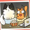 JERN & BUN THE CAT