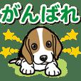 Wanko-Biyori Beagle Puppy