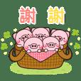 可愛的小豬♡日常 2