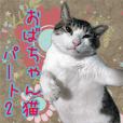 おばちゃん猫【2】