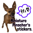 Miniature Pinscher's stickers.4