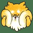 Yu's Shiba