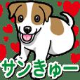 Wanko-Biyori JRT-Jack Russell terrier 4