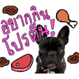 CHAOGUAY The Frenchie EP.01