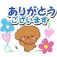 Toy poodle (Honorific version)