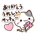 Small Cute Calico cat 14