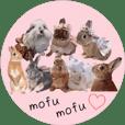 fluffy bunny sticker