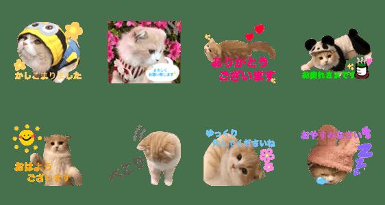 敬語ロイヤルミルクティーくんのスタンプ Lineクリエイターズスタンプ Stamplist