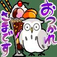 Softly owl