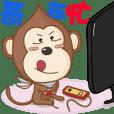 Monkey Monkey-Daily Paradise