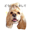 amecoka stamp2