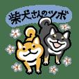 柴犬さんのツボ vol.6 励まし&思いやり編