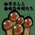 Mr. Matsutake Mushroom