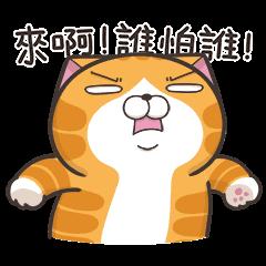 臭跩貓愛嗆人-白爛貓超過動