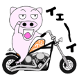 The pig began to ride a motorcycle 4rd