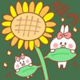 ウサコとネココの日常【夏】海や花火など