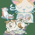 秋田の猫たち