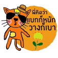 Little tiger, Sua noi (Sweet Cat)in June