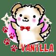 malpoo Vanilla & dog friends