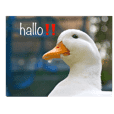 lovely ducks sticker