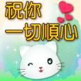 Cute little white cat-yellow big font