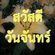สวัสดีดอกไม้ ๓